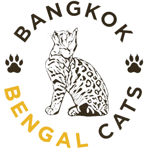 Bangkokbengalcats