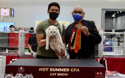 """Hot Summer"" CFA Cat Show results"